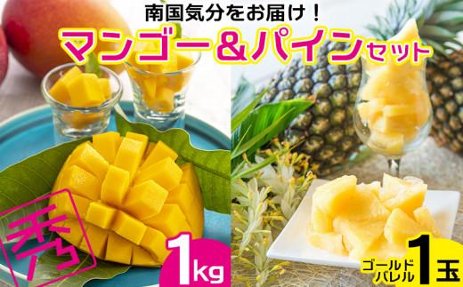 【2021年発送】南国気分をお届け!完熟マンゴー秀品1kg&ゴールドパイン1玉セット