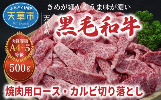 S001-026_天草産黒毛和牛 焼肉用ロース・カルビ切り落とし 500g