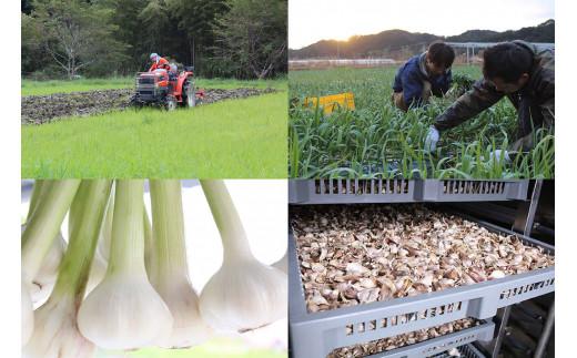 自社のオーガニック農園及び加工場は有機JASを取得しています。農薬や化学肥料不使用・無添加で一つ一つ丹精を込めて作っています。