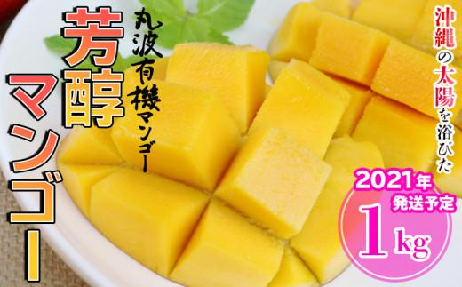 【2021年発送】沖縄の太陽を浴びた芳醇なマンゴー 1kg