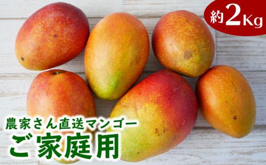 ご家庭用!濃密マンゴー《家庭用・2Kg》【2021年発送】農家さんより直送!