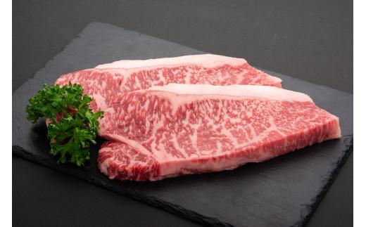 鹿児島県産黒毛和牛サーロインステーキ〈約200g×2枚〉ニコニコエール品