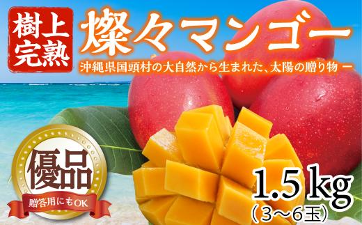 【樹上完熟】燦々マンゴー【優品1.5Kg(3~6玉)】【2021年6月発送開始】