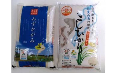 ◆【特A食べ比べセット】高島市新旭産みずかがみ・コシヒカリ