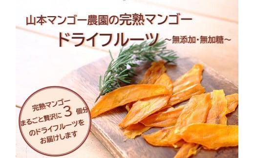 まるごと贅沢!完熟マンゴーのドライフルーツ 20g×3袋(無添加・無加糖) [10-105]