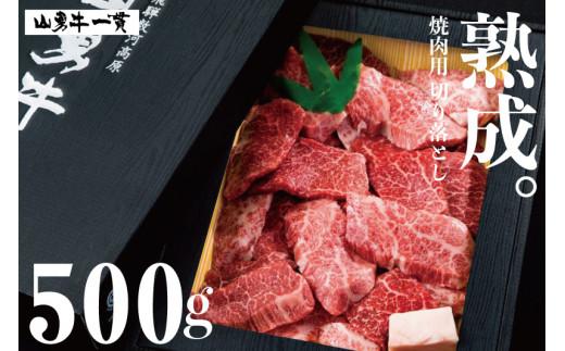 「山勇牛」焼肉用 切落し 切り落とし 500g 牛肉 和牛 飛騨牛 肉 稀少部位