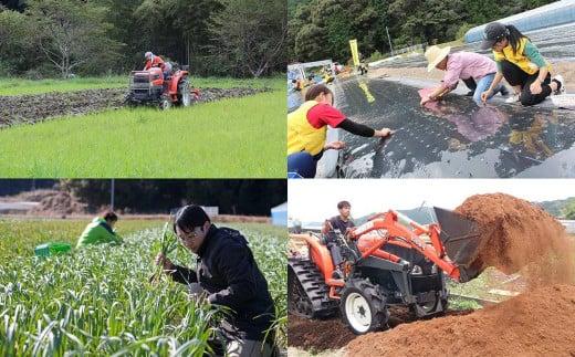 当社のオーガニック農園は有機JASを取得し農薬や化学肥料不使用で栽培しています。加工場まで5分と近く高鮮度を保てるのが強みです。