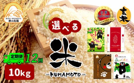 DI8【定期便12回】≪選べる品種≫熊本県産米 10kg×12回