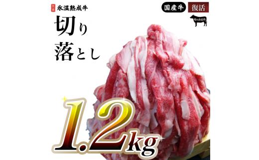 010B332 氷温(R)熟成牛 切り落とし1.2㎏