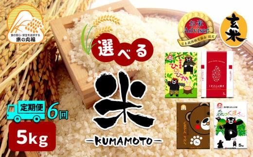 DI5【定期便6回】≪選べる品種≫熊本県産米 5kg×6回