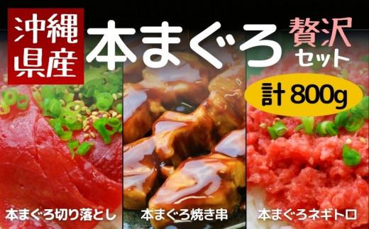 【沖縄県産】贅沢本マグロの切り落とし・ネギトロ・串セット 計800g