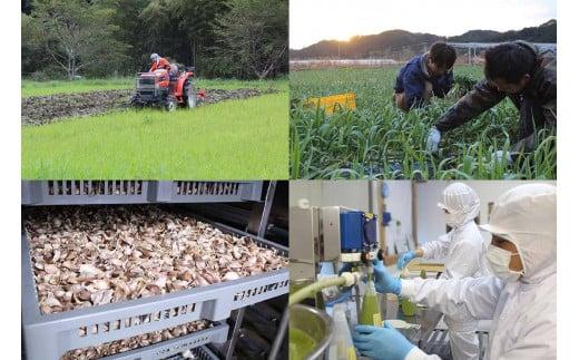 当社のオーガニック農園は有機JASを取得し農薬や化学肥料不使用で栽培し、黒ニンニクや餃子の食品加工も全て自社工場で行っています。