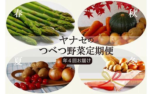 【E050-2】ヤナセ農園 つべつ野菜定期便 (年4回お届け)