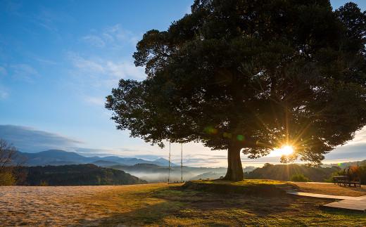 PK-002 天空の森「霖雨の森」ペア宿泊券(1泊2食付)温泉付きヴィラで1日1組限定の完全プライベート1泊2食付きペア宿泊チケット【天空の森】