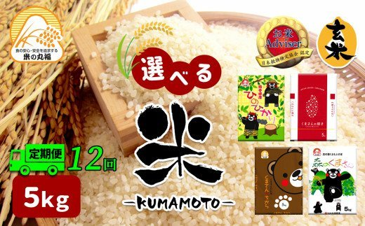 DI7【定期便12回】≪選べる品種≫熊本県産米 5kg×12回