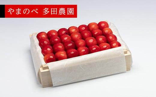 《先行予約》2021年 特選紅秀峰 桐箱詰 2Lサイズ以上 約500g「やまのべ 多田農園」 F20A-790
