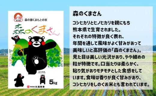 さん くま 米 の 森 熊本県産Sランクのお米 森のくまさんが評判なので食べてみた│ベスロア
