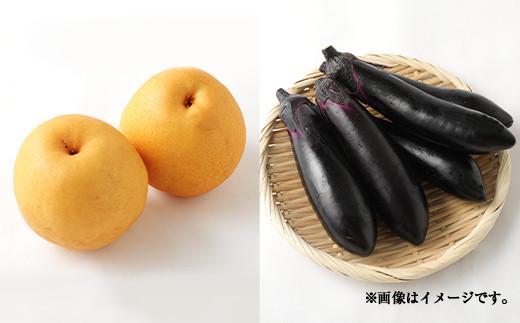豊野の恵み 野菜 果物 10品目程度 詰め合わせ 盛り合わせ
