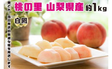 【2021年発送】 山梨県産  完熟桃 白鳳系 約1kg (2〜5玉)