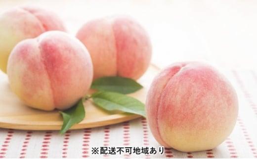 [№5563-0559]【2021年発送】錦の水蜜 桃 2kg(約6玉~8玉)【配送不可:離島】