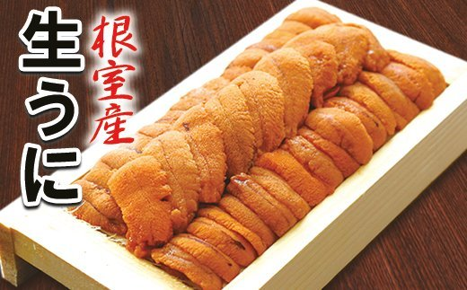 A-10059 【北海道根室産】エゾバフンウニ130g前後×1折(黄色~オレンジ)