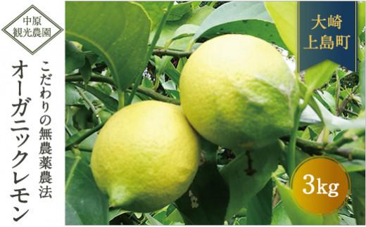 有機JAS認証!土から育てた大崎上島のオーガニック完熟レモン約3kg