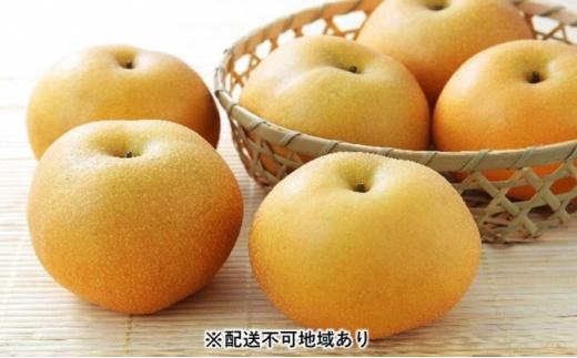 [№5563-0561]【2021年発送】錦の 梨 5kg (約10玉~12玉)【配送不可:離島】