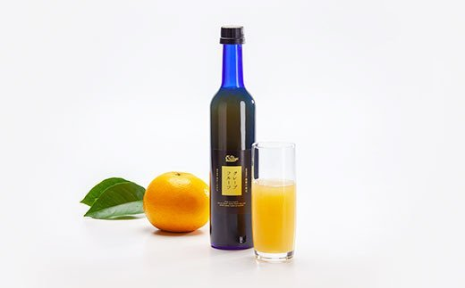 果汁100% グレープフルーツ ジュース 500ml × 12本 セット