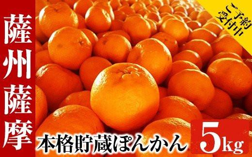 A-788【先行受付】数量限定!本格貯蔵ぽんかん薩州薩摩(5kg)