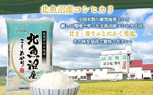 【9ヶ月連続お届け】北魚沼産コシヒカリ(長岡川口地域)5kg+無洗米300g×3袋【期間限定増量】