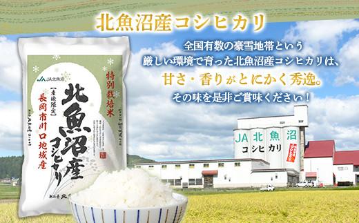 【6ヶ月連続お届け】北魚沼産コシヒカリ特別栽培米5kg(長岡川口地域)+無洗米300g×3袋【期間限定増量】