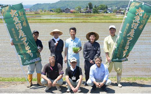 北魚沼産コシヒカリ(長岡川口地域)10kg+無洗米300g×3袋【期間限定増量】