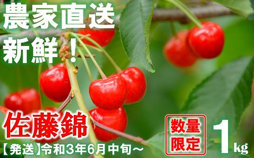 920【令和3年6月~発送】さくらんぼ 佐藤錦 約1kg(秀・L以上) 生産者:田中 勝
