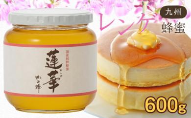 <国産>九州レンゲ蜂蜜【600g】採蜜できる量が少ない貴重な純粋蜂蜜