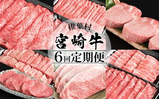 【定期便 6回】受賞歴多数!! 宮崎牛を6ヶ月で合計4.9キロ 宮崎牛づくし