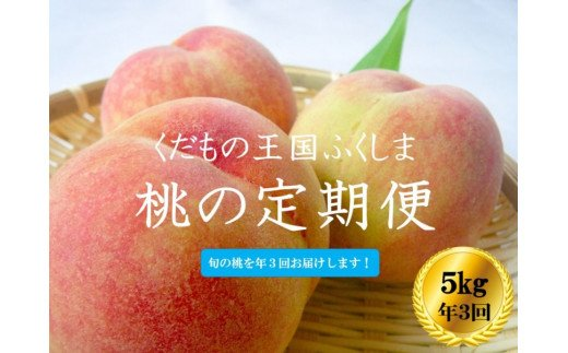 No.1028 【先行予約】ふくしまの桃 5kg 定期便3回【贈答用】もも モモ