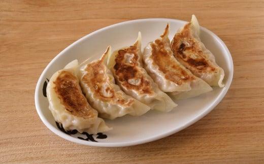 DH016 【中華蕎麦とみ田】心の味餃子5個×2セット
