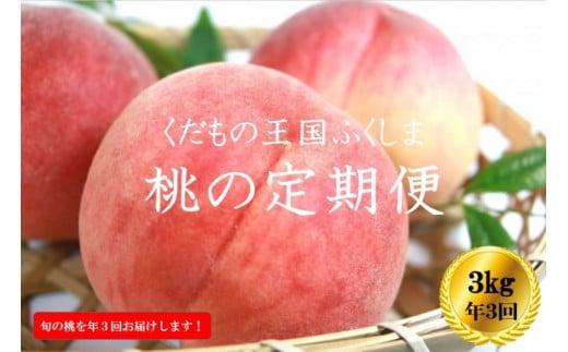 No.1027 【先行予約】ふくしまの桃 3kg 定期便3回【贈答用】もも モモ