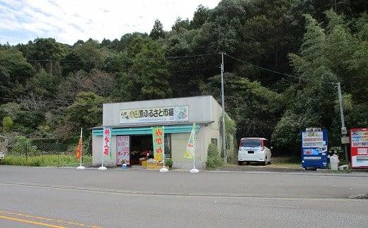 小田原ふるさと市場の様子(外観)