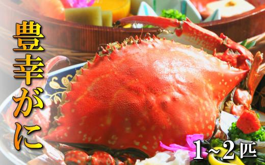 C-34 天然ゆでわたりガニ(1~2匹) かに 蟹 豊幸がに 活き渡りかに 蟹味噌 ガザミ 大分産 天然物 豊前海 冷凍
