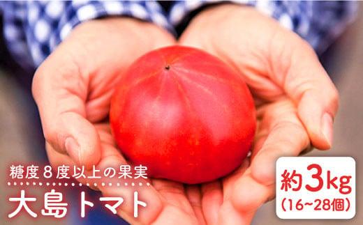 ※数量限定※【糖度8度以上の果実】大島トマト 3kg<大島造船所 農産グループ> [CCK005]