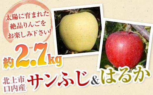 【北上市/口内産】りんご 2.7㎏ サンふじ・はるか