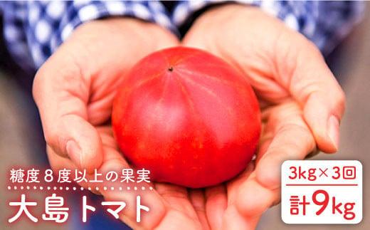 【3kg×3回定期便】糖度8度以上の果実!大島トマト 計9kg【数量限定】<大島造船所 農産グループ> [CCK006]