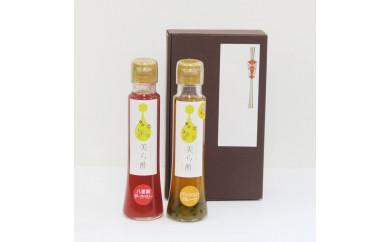南国フルーツビネガーソース 琉球百花美ら酢2本セット