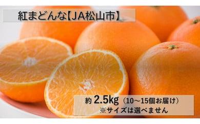 【松山市興居島産】JA松山市  紅まどんな 約2.5kg(10~15個お届け)