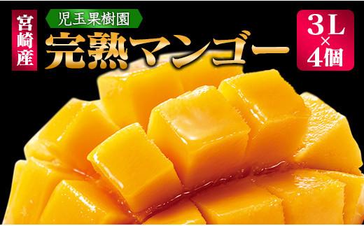 「南国宮崎からお届け」児玉農園 完熟マンゴー 3Lサイズ 4個【D65】