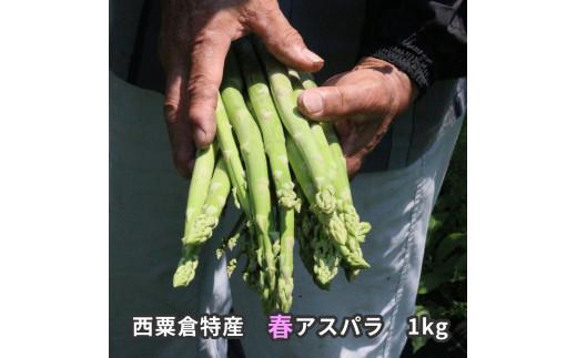 【先行予約受付中】A87 西粟倉特産 春アスパラ 1kg