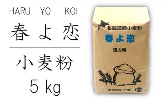 北海道産小麦粉 春よ恋 1kg×5袋セット(5kg)