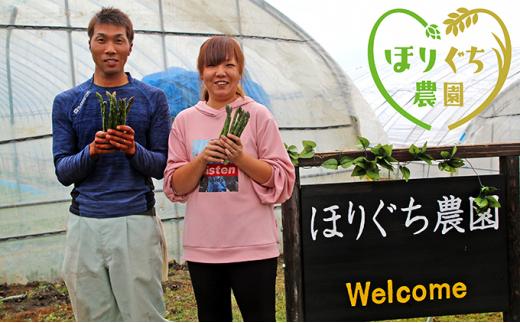 [№5665-0856]ほりぐち農園の朝もぎ春グリーンアスパラ 約1kg ※2021年4月よりお届け