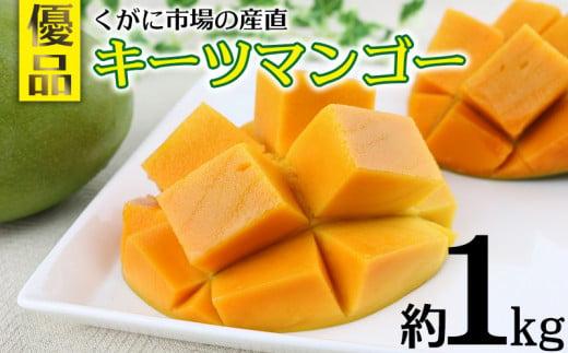 【2021年発送】くがに市場の産直キーツマンゴー約1kg【優品】